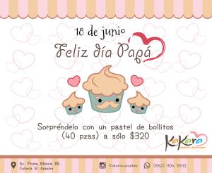 Kokoro - Día del Padre 2017